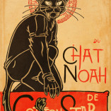 Le Chat Noah by Ben Geldenhuys